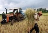 منابع ارزی در جنگ اقتصادی، صرف حمایت از کشاورز خارجی میشود